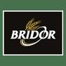 Sac-de-Pub-Reference-Bridor